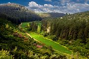 Ramat Menashe Park and Biosphere Reserves, Israel