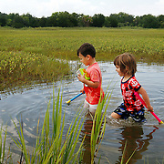 Hayes Mizell, 4, of Beaufort, and Winnifred Balza, 4, of Beaufort, explore through the marshes with their children's bug nets looking for bugs and insects to put in their bug jar near The Sands in Port Royal on July 17, 2014.