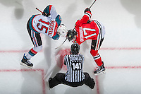KELOWNA, CANADA - JANUARY 28: Linesman Kevin Crowell, prepares to drop the puck at the face off between Tomas Soustal #15 of the Kelowna Rockets and Alex Overhardt #17 of the Portland Winterhawks on January 28, 2017 at Prospera Place in Kelowna, British Columbia, Canada.  (Photo by Marissa Baecker/Shoot the Breeze)  *** Local Caption ***