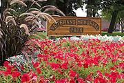 Red petunias in garden of the Veterans Memorial Park.  Fergus Falls Minnesota USA