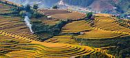 Vietnam images-landscape-MucanChai-Yen Bai province