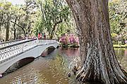 Long White Bridge over the Big Cypress Lake at Magnolia Plantation April 10, 2014 in Charleston, SC.