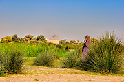 Shepherdess in the Dahshur lake area with Black pyramid in the distance behind her