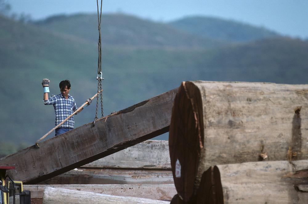 China, Hong Kong, Man directs crane lifting massive logs at lumber mill in New Territories