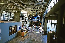 Monterey Bay Aquarium Lobby