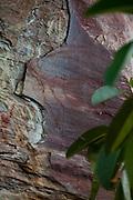 Sao Goncalo do Rio Preto_MG, Brasil...Parque Estadual do Rio Preto, em Sao Goncalo do Rio Preto, Minas Gerais. Na foto detalhe da pintura rupestre na rocha...The Rio Preto State Park, in Sao Goncalo do Rio Preto, Minas Gerais. In this photo the rock painting...Foto: LEO DRUMOND / NITRO