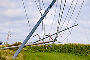 "12 AUGUST 2020 - HUXLEY, IOWA: Downed power poles and lines in central Iowa Wednesday, 48 hours after a wind storm tore through the area Monday. According to Iowa Governor Kim Reynolds, the storm damaged 10 million acres of corn and soybeans in Iowa, about 1 one-third of Iowa's 32 million acres of agricultural land. Justin Glisan, Iowa's state meteorologist, said the storm Monday, Aug. 10, lasted 14 hours and traveled 770 miles through the Midwest before losing strength in Ohio. The storm was a seldom seen ""derecho"" that packed straight line winds of nearly 100MPH. The storm pummelled Midwestern states from Nebraska to Ohio.     PHOTO BY JACK KURTZ"