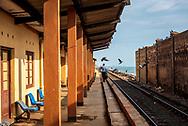 Pigeons fly past a solitary man walking at Kollupitiya Railway Station in Colombo, Sri Lanka. (March 30, 2017)