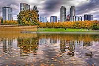 Bellevue Downtown Park, Overcast