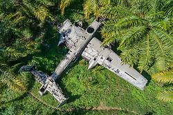 Luftbildaufnahme von Flugzeugwrack in Oelpalmen Plantage, Kimbe, Neubritannien, Papua Neuguinea / Arial View of airplane wreck in Oil palm plantation, Kimbe, New Britain, Papua New Guinea, PNG