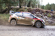 Jari-Matti Latvala(FIN)and Co/Driver Miikka Anttila(FIN)Toyota Yaris WRC during the Wales Rally GB at the Snowdonia National Park on 4 October 2019.Stage SS3 Penmachno