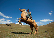 Puckering up to hyenas, cuddling pythons and caressing camels... these images show just how crazy the world is about animals<br /> <br /> An intrepid photographer has scoured the planet snapping people and their pets.<br /> French photographer Eric Lafforgue, travelled everywhere from Easter Island to North Korea to capture on camera mankind's love for animals.<br /> Taken over a period of ten years, each picture gives the viewer a glimpse into the types of pets people choose to own and the relationships they forge with them.<br /> <br /> <br /> Eric Lafforgue spent a decade, from 2005 to 2015, taking photographs of people communing with animals  He ventured as far afield as Ethiopia, Benin, Saudi Arabia, Panama, North Korea, Myanmar and Kyrgyzstan <br /> Among the most astonishing photographs is a man holding meat in his mouth and feeding a hyena  The Frenchman said: 'It is a great lesson of life, you need to take care of the animal to survive'<br /> <br /> Photo shows: Horse riding is central in Kyrgyz nomads culture as horse enables them to cover long distances in the huge steppes.