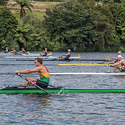 The field of the mens single in the early stages of the race<br /> <br /> Racing at the NICC regatta on Lake Karapiro, Monday 29 January 2018. Copyright photo © Steve McArthur / www.photosport.nz