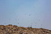 Three men sit at the top of Okhla landfill while birds fly around the dumping ground on 18th September 2018 in Okhla, Delhi, India. The site was decommissioned in 2018 after reaching three times the permissible limit.