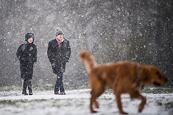 © Licensed to London News Pictures. 24/01/2021. London, UK. A couple walk their dog in heavy Snowfall on Hampstead Heath in Hampstead in north London. Parts of the UK continue to suffer from flooding caused by Storm Christoph. Photo credit: Ben Cawthra/LNP