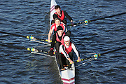 Crew: 15   City of Sheffield RC   CSH-LUCKHAM   4- Band 1<br /> <br /> Head of the Trent 2018<br /> Division 3<br /> <br /> To purchase this photo, or to see pricing information for Prints and Downloads, click the blue 'Add to Cart' button at the top-right of the page.