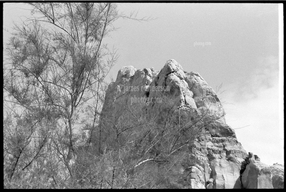 Capitol Reef National Park. View shot on Tri-X, Nikon Ftn camera, Nikor 105mm f/2.5 lens. 500th sec F/16