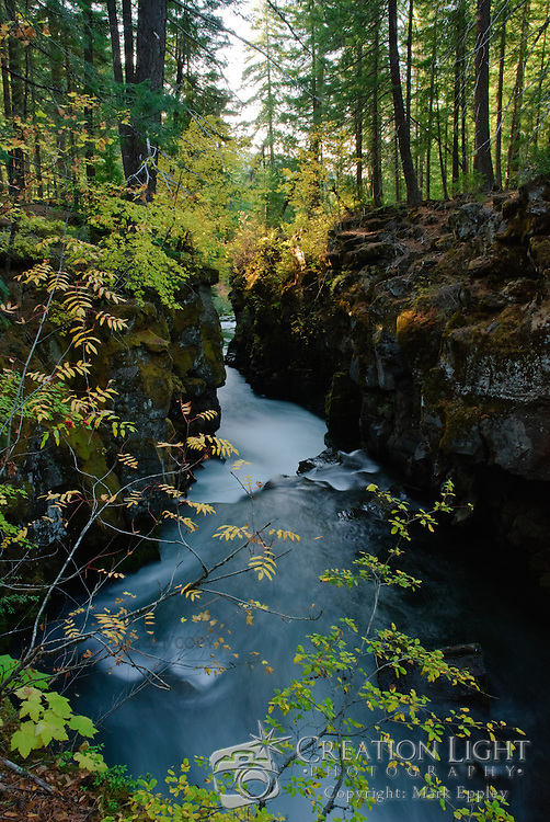 The Rogue River Gorge near Union Creek, Oregon in the Cascade Mountians is just miles from Crater Lake National Park.  The Rogue River goes through a series of elevation changes forming many waterfalls as it is forced through a narrow basalt canyon formed by the areas volcanic past.  The gorge was formed by the erosive action of the river. A small cave that is on the west wall of the gorge is the end of a lava tube.