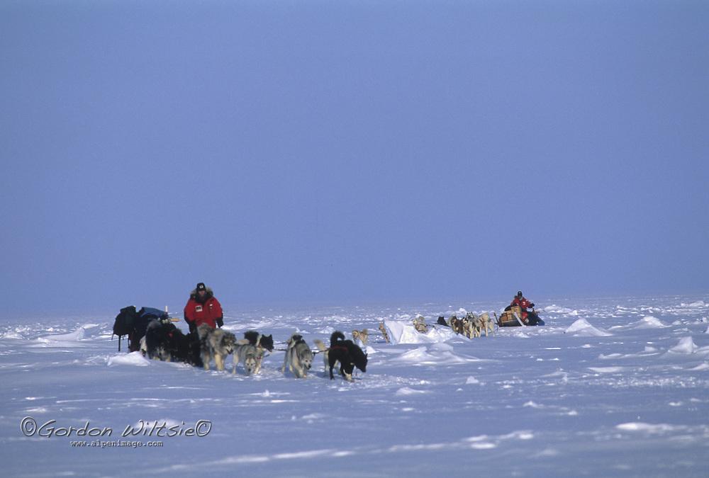 A dog musher and his team run across the frozen ocean near Gjoa Haven.