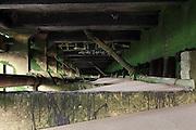 Green walls of algae underneath a boardwalk, beneath the Oxo Tower on London's South Bank