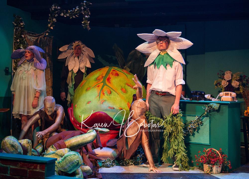 St Paul's School production Little Shop of Horrors.  ©2014 Karen Bobotas / for St Paul's School