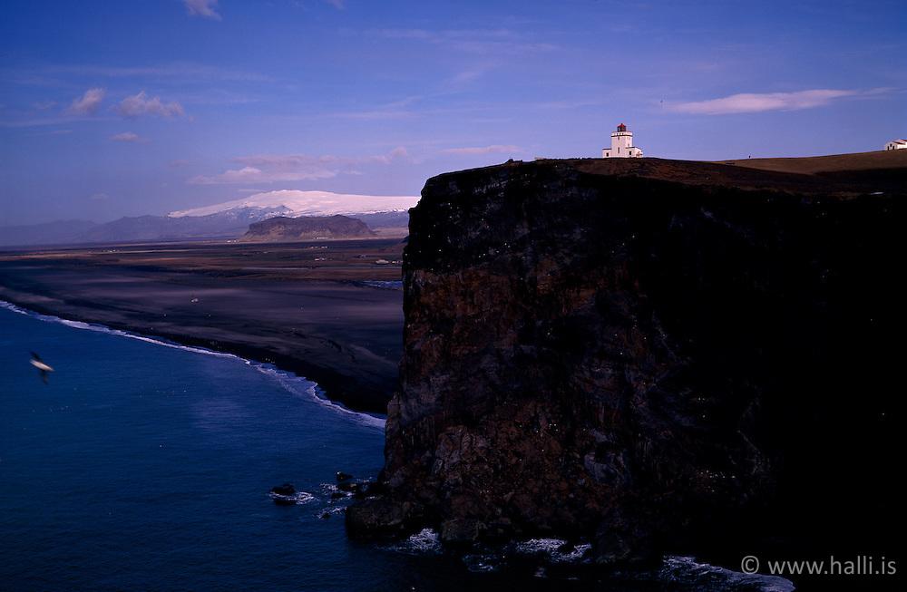 Vitinn að Dyrhólaey með Eyjafjallajökul í baksýn, fuglalíf / The lighthouse at Dyrholaey with the glacier, Eyjafjallajokull in tha back.