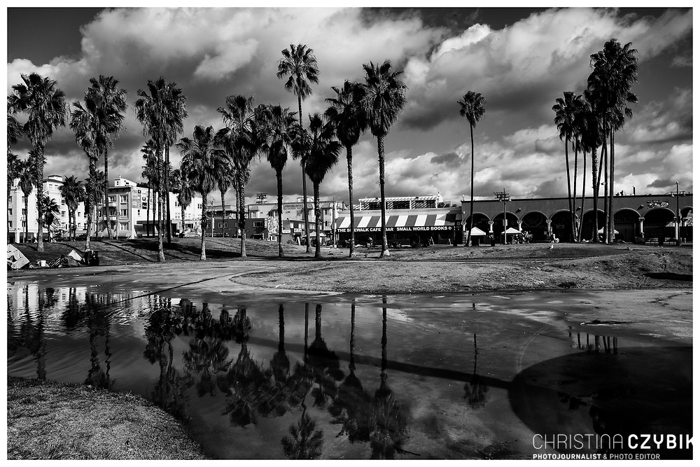 LA Noir: Venice Beach Ocean Front Walk Palm Trees