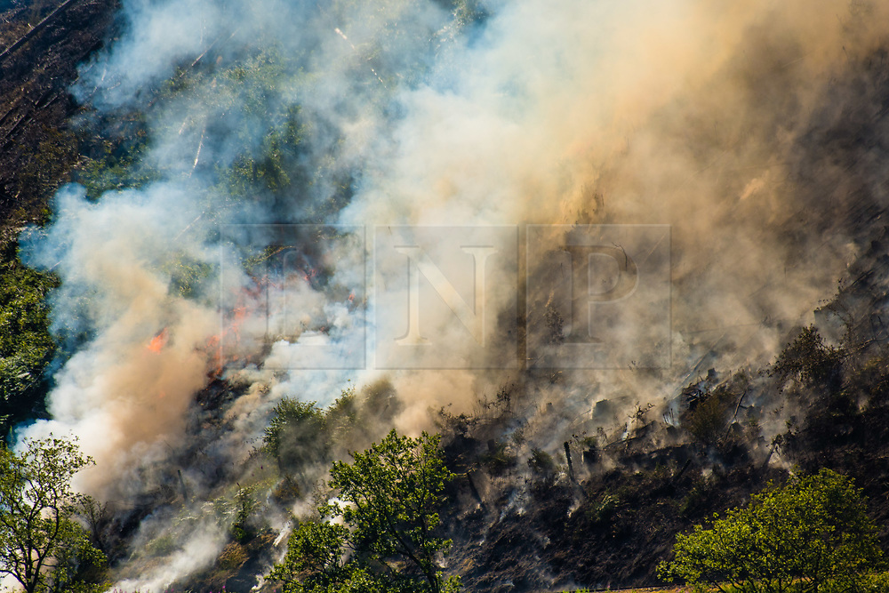© Licensed to London News Pictures. 29/06/2018. Rheidol Valley, UK. A forest fire that started on Tuesday  26the June  is still burning and smouldering for a fourth day along the steep hillsides of the Rheidol Valley, a few miles inland of Aberystwyth in Mid Wales. Photo credit: Keith Morris/LNP