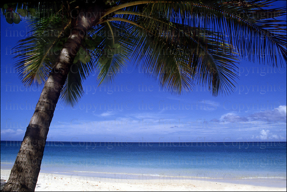A beautiful beach on the island of Grenada photographed by Terry Fincher. Copyright © Terry Fincher 1985.