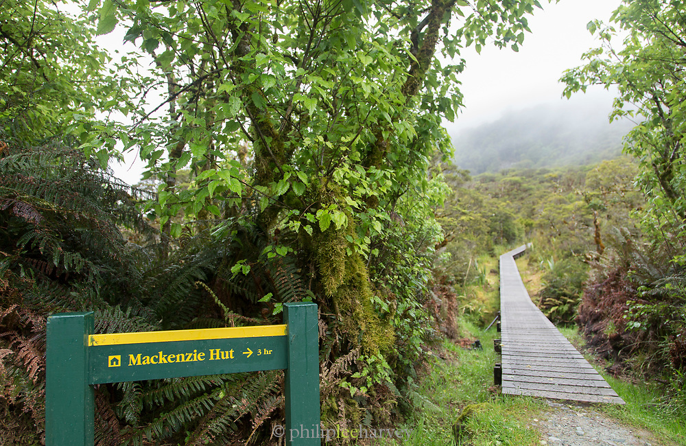 Trail post for Mackencie hut along the Routeburn Track and a boardwalk through a forest, South Island, New Zealand