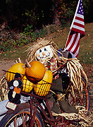 Scarecrow riding a bicycle, autumn roadside folk art by Jeraldine Titus of West Mansfield, Ohio.   (Property Released)