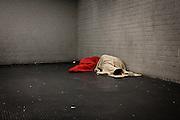 Homeless sleeping in the metro of Brussels