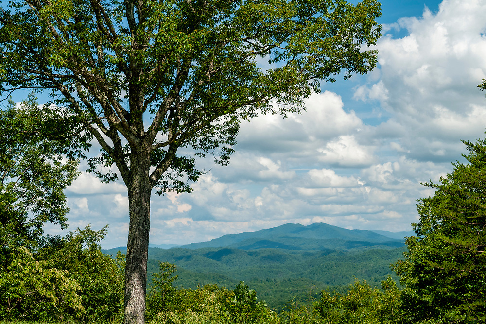 View of Scott Mountain at the Scott Mountain Overlook on the Foothills Parkway in Great Smoky Mountains National Park in Walland, Tennessee on Wednesday, August 12, 2020. Copyright 2020 Jason Barnette