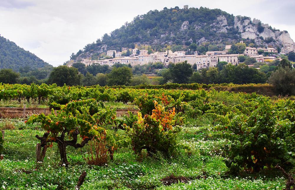 The Seguret village clinging to the hillside, viewed over a vineyard, Domaine de Cabasse. Old Grenache vines in the foreground. Domaine de Cabasse Hotel Restaurant, Alfred and Antoinette Haeni, Séguret, Seguret Cote du Rhone Vaucluse Provence France Europe