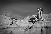 Female nude in the landscape, Bisti Wilderness, New Mexico