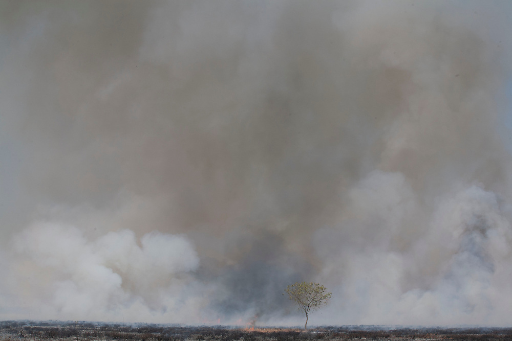 Janauba_MG, Brazil.<br /> <br /> Grande incendio proximo as margens  BR 122 em Januba, Minas Gerais.<br /> <br /> Fire near BR 122 highway in Janauba, Minas Gerais.<br /> <br /> Foto: LEO DRUMOND / NITRO
