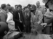 "Cork / Dublin Gas Pipeline.28.04.1982.04.28.1982.28th April 1982.1982...At Brownbarn,Kingswood,Dublin the Minister for Industry and Energy, Mr Albert Reynolds T.D. performed the ceremonial first weld to officially start the project. .Minister Reynolds adds a final touch to the weld, forgetting in the process to lower his mask to prevent ""Blue Flash"" from damaging his eyes. Among the onlookers were Mr Michael McStay,Chairman,An Bord Gais, The Dutch Ambassador Mr Van Der Berg, Mr Eoin O'Cionnaigh, Consulting Engineer and Mr Harry Mol, Project Manager."