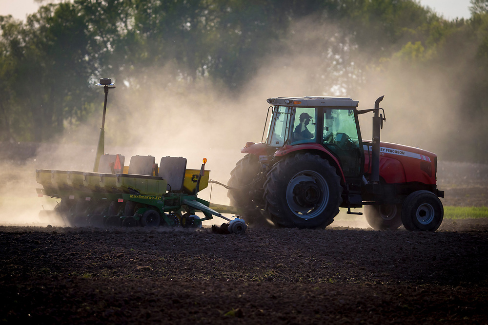 David Schlies kicks up dust as he plants corn late in the day on his farmer ned Denmark, Wisconsin.