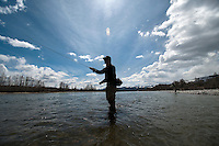 John Shepard, of Jackson, casts for whitefish while competing in the Whitefish Derby on Saturday near the Wilson Bridge over the Snake River. See this week's Jackson Hole News&Guide for a story from the annual Trout Unlimited fundraiser.