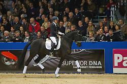 933 Scholtens Emmelie (NED) - De Mijne C<br /> KWPN Hengstenkeuring - 's Hertogenbosch 2012<br /> © Dirk Caremans