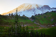Sunset view of Mount Rainier near Paradise - Mount Rainier National Park, WA