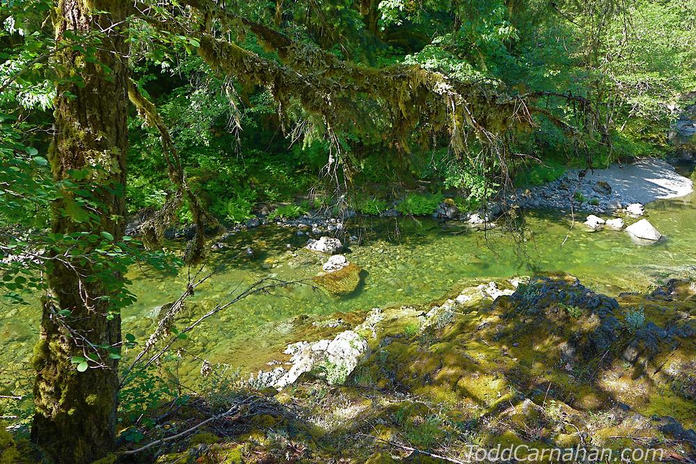 koksolah river below trestle