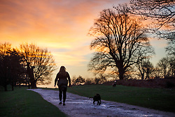 © Licensed to London News Pictures. 13/01/2016. London, UK. People walking in Richmond Park in London at sunrise following one of the coldest nights in a year as temperatures in the capital drop as low as -1C on Wednesday, 13 January 2016. Photo credit: Tolga Akmen/LNP