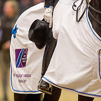 FEI World Cup™ Dressage Grand Prix - 2017 Olympia London Horse Show