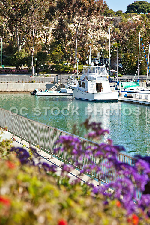 Dana Point Harbor Boat Docks