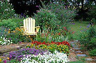 63821-13918 Yellow Adirondack chair in flower garden - White Petunias, Blue Fan Flowers, Melampodium, various Salvias, Black-eyed Susans, Butterfly Bushes Marion Co. IL