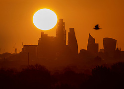 © Licensed to London News Pictures. 07/05/2021. London, UK. The morning sun rises over the City of London. Colder wetter weather is expected over the weekend and into next week. Photo credit: Peter Macdiarmid/LNP