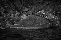 Merced River Meditation. Image taken with a Nikon D3 camera and 24-70 mm f/2.8 lens (ISO 200, 55 mm, f/22, 4 sec). Camera mounted on a tripod. Monochrome Version.