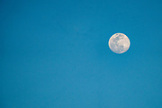 Full daytime moon with a blue sky background