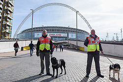 © Licensed to London News Pictures. 26/03/2017. London, UK. Handlers with police dogs which are wearing jackets labelled Explosives Search are seen on Wembley Way. Following the Westminster terrorist attack, a visible security presence is on display outside Wembley Stadium for the World Cup qualifier match between England and Lithuania.  Photo credit : Stephen Chung/LNP